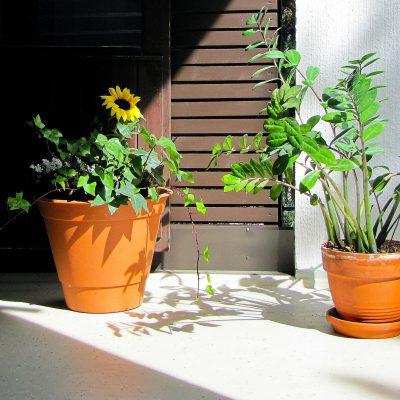 Aménager son balcon-terrasse selon ses envies